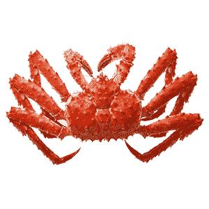 タラバガニ(たらば蟹)通販店 比較・ランキング