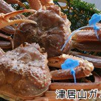 津居山ガニ(ズワイガニ オス)
